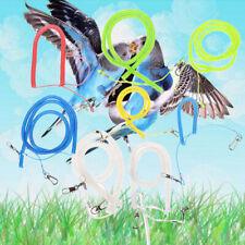 New listing 2M-10M Bird Flying Rope Parrot Cockatiels Starling Bird Pet Leash Kits Ew