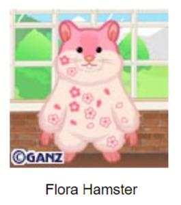 Webkinz Classic Flora Hamster *Code Only*