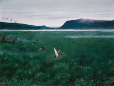 Theodor Kittelsen The twelwe wild Ducks Giclee Canvas Print Poster LARGE SIZE