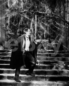 Dracula (1931) Bela Lugosi 10x8 Photo
