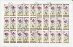 Hungary Scott 1706 Cactus 1740-41 Crocus/Cyclamen flowers in complete sheets