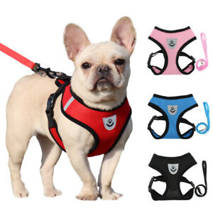 Dog Mesh Harness and Leash Set Puppy Cats Harness Vest For Small Dogs Walking