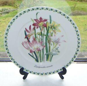 Portmeirion Ladies Flower Garden Pattern 1 x Dinner Plate 27cm Jane Loundons