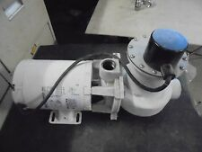 Bluffton Pool WELL Pump Motor 1081 .33 HP 115/230V