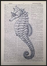 Vintage Seahorse Print Picture Dictionary Page Wall Art Nautical Beach Sea Coast