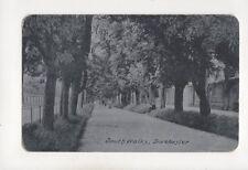 South Walks Dorchester Vintage Alumino Postcard 317b