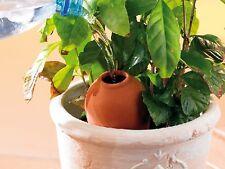 Terracotta-Bewässerungshilfen Wasserspeicher Wasserspender für Topfpflanzen 3er