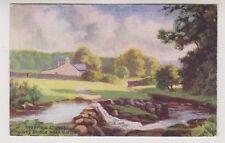 Derbyshire postcard - Stepping Stones, Goyts Bridge, near Buxton