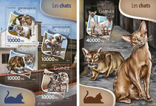 Cats Katzen Pets Domestic Animals Fauna Guinea MNH stamp set