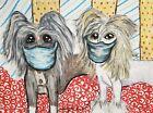 KSAMS Chinese Crested 4x6 Art Print of Pastel Painting Wearing Quarantine Masks