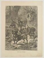 SPECHT, 'Der Dachshund'. Im Wald mit vier Dackeln, 19. Jh., Holzstich
