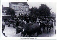 1997  --  COMICE AGRICOLE A PAUSSAC  EN 1951   3L796