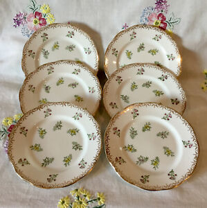 *6 STUNNING VINTAGE SALISBURY GILDED DITSY FLORAL TEA SET CAKE TEA PLATES*