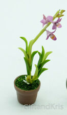 Clay Dollhouse Miniature Orchid Dendrobium Flower Pot - Dendrobium014