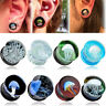 Jellyfish Flesh Tunnels Glass Saddle Ear Plugs Ring Gauges Earring Piercing SP