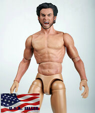 1/6 Muscular Figure With Wolverine Head X-MEN ZC Toy Roar Hugh Jackman TTM19 USA