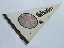 Vintage 1975 WFL Memphis Grizzlies The Trio Photo Pennant Warfield Csonka Kiick