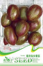 1 Bag 20 Seed Purple Tomato Vegetable Great SEED C055