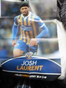 JOSH LAURENT SHREWSBURY TOWN BIG POSTER