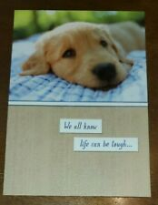 Heartline Hallmark Cards encouragement get well themed greeting card, cute puppy