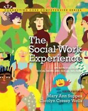 The Social Work Experience: An Introduction to Social Work and Social Welfare