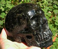 """5"""" Blue Astrophyllite Crystal Skull Healing Skeleton Detailed Carved #1901"""