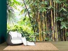 Forest Trees Bamboo Tropical Grove Wall Mural Photo Wallpaper GIANT WALL DECCOR