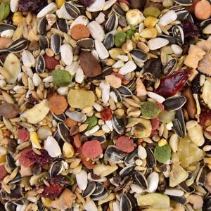 Graupapageien Futter - 2,5 kg Wagner's Saaten & Obst, Papageien Mix