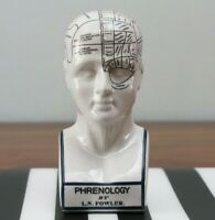 Porcelain Phrenology Head Medical Collectible Decor