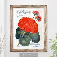 VINTAGE FLOWERS Art Print Poster Red Geranium Garden Floral Victorian Plants Old