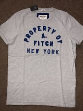 NWT Abercrombie & Fitch By Hollister Mens Tee T-Shirt Heather Gray XL Vintage