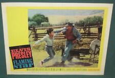 Elvis Presley Original Movie Lobby Card 11 x 14 Flaming Star 1960