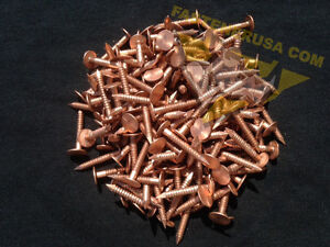 """3 1//2/"""" Solid Copper Nails • 10GA • 20 Count For Killing Unwanted Trees and Roots"""