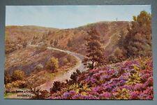 R&L Postcard: Sailor's Stone & Gibbet Hill Hindhead J Salmon Art Card