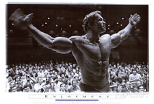 Arnold Schwarzenegger Poster Print, 40x27