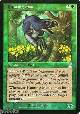 MTG - Time Spiral - Hunting Moa - Foil - NM