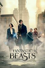 Fantastic Beasts and Where to Find Them DVD Movie