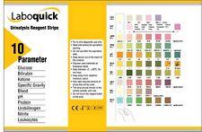 10 Strips (2x5 Pack) - Urinalysis 10 Parameter Professional/GP Urine Test Sticks