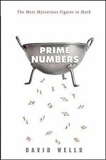 Prime Numbers : The Most Mysterious Figures in Math by David Wells (Hardcover)