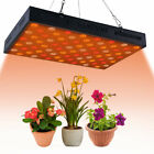 Indoor Plants Light Seed Grow System Full Spectrum Grow Light PT picture