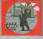 (HE822) Aerosmith, Hole In My Soul - 1997 CD