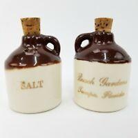 vtg Busch Gardens Tampa Florida FL Ceramic Country Jugs Salt & Pepper Shakers