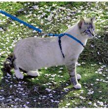 Achetez votre Harnais pour chat et laisse Easy Walk® (Moyen, Bleu) - PetSafe®...