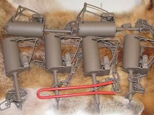 DP setter tool + 6 Powder Coated Duke DP Dog Proof Coon Traps Trapping Raccoon