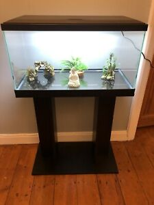 **BRAND NEW** Fish Tank & Stand: Heater, Filter & Water Treatment Included
