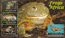 Sierra Leone 2011 MNH Frogs of Africa 4v M/S Tree Frog African Red Toad Stamps