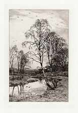 """FREE FRAMING 1800s SLOCOMBE ORIGINAL Etching """"Pretty Birch Trees"""" SIGNED COA"""