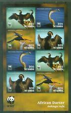 Gambia 2014 - WWF - Weltweiter Naturschutz - afr. Schlangenhalsvogel 6917-20 KB
