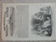 3 LARGE ENGRAVINGS   ILLUSTRATED LONDON NEWS  1850s   JEYPOOR   COORG & SANTHAL