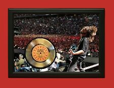 Foo Fighters Poster Art Wood Framed 45 Gold Record Display C3